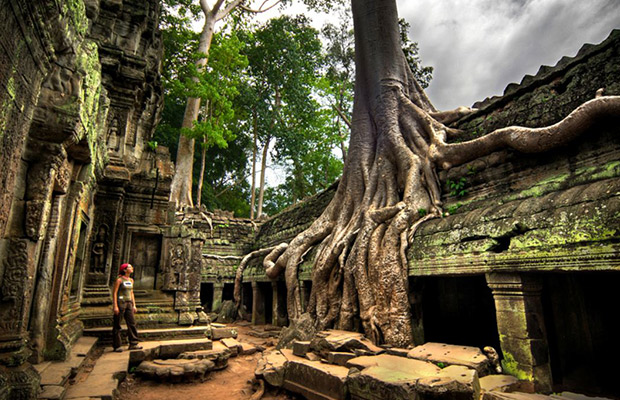 Ta Prohm and Banteay Kdei Temple Tour